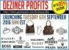 Deziner Profits image