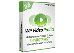 Video Profits image